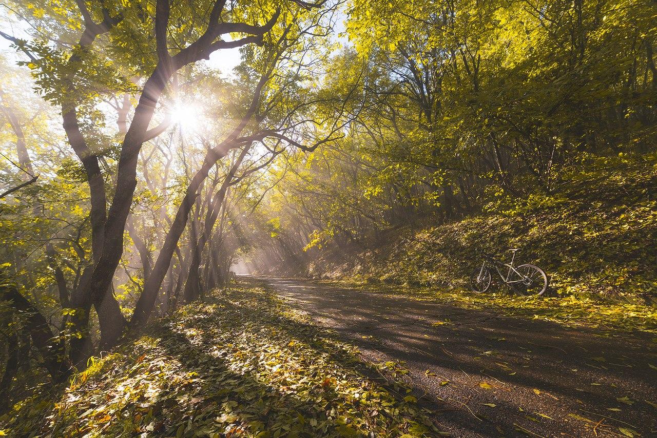 Дорога на вершину Машука в погожий день