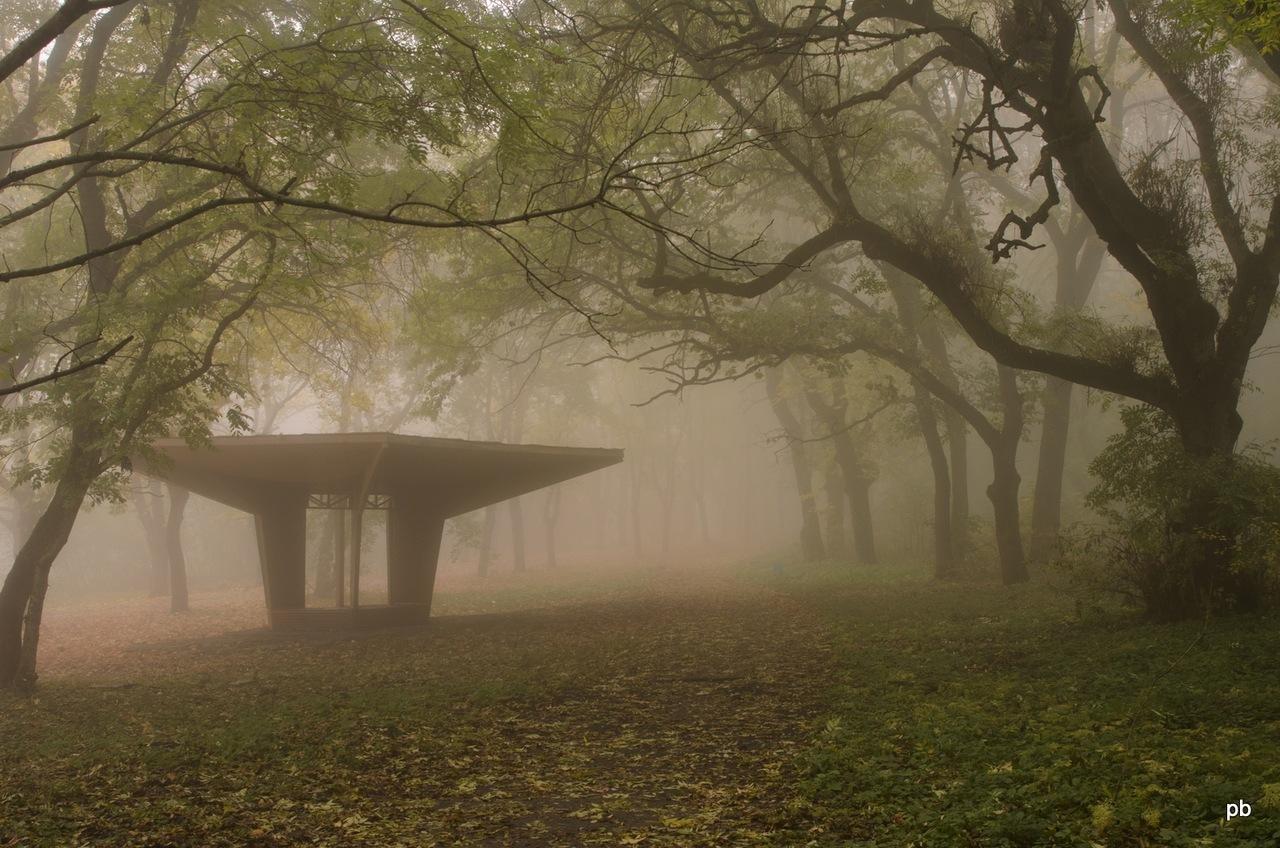 Дорога вокруг Машука осенью